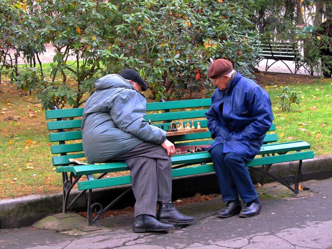 Пенсионные баталии - Сергей Карачин