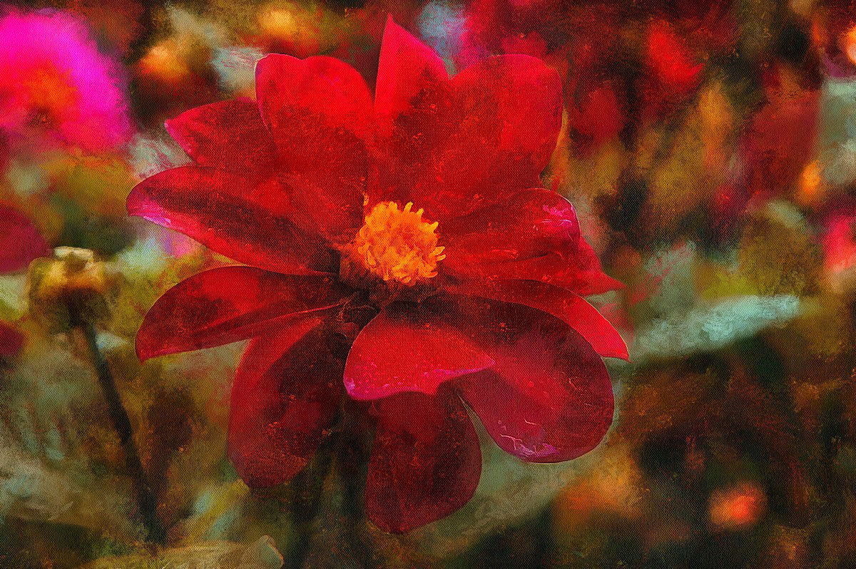 Red flower,,, - марк