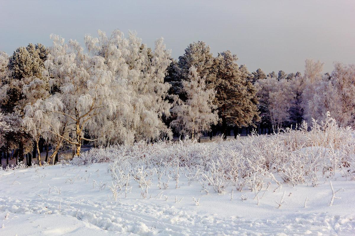 Зимний пейзаж - Анатолий Иргл