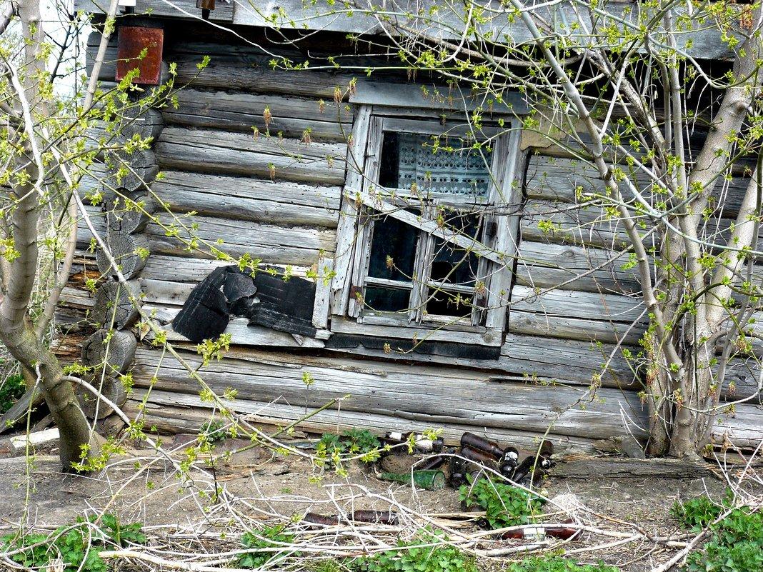 причина запустения - под окном - Леонид Натапов