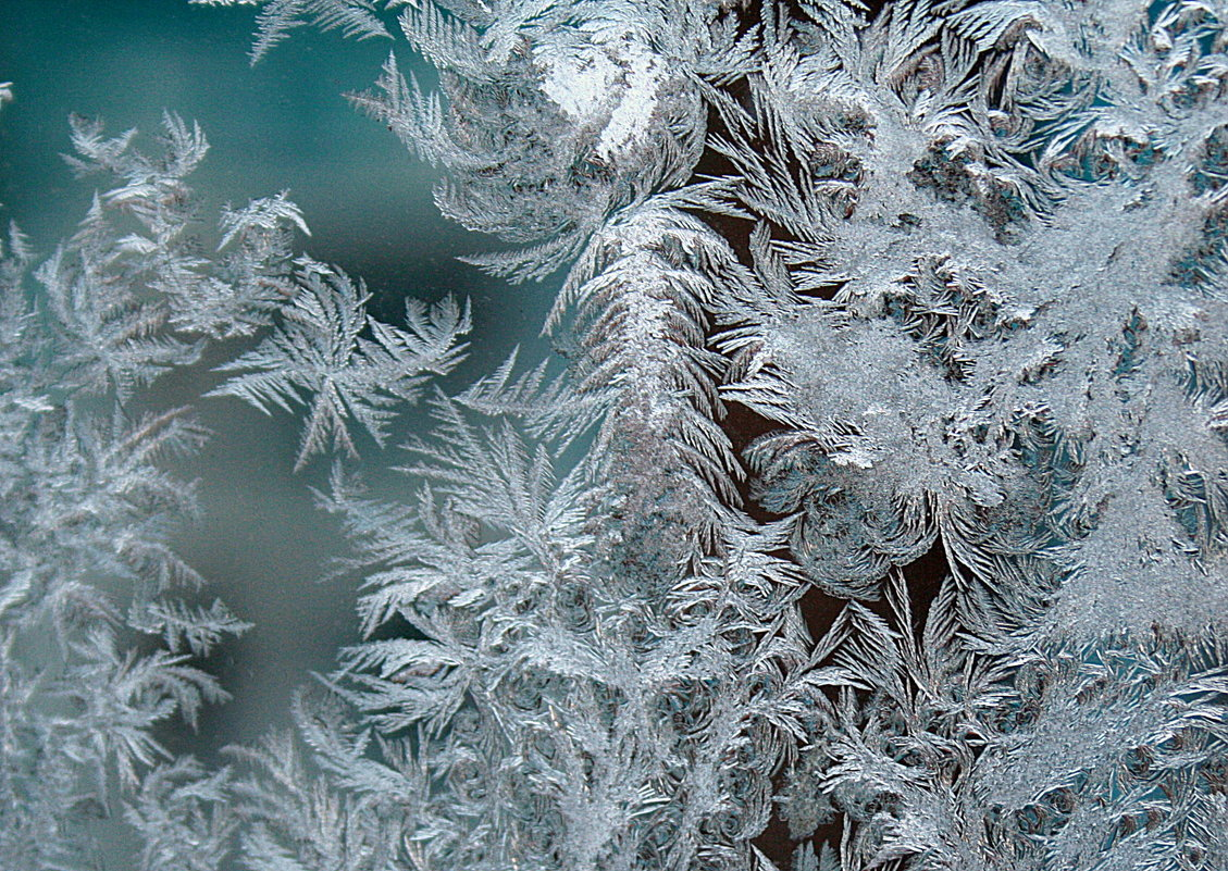Рисует мороз... - Николай Масляев