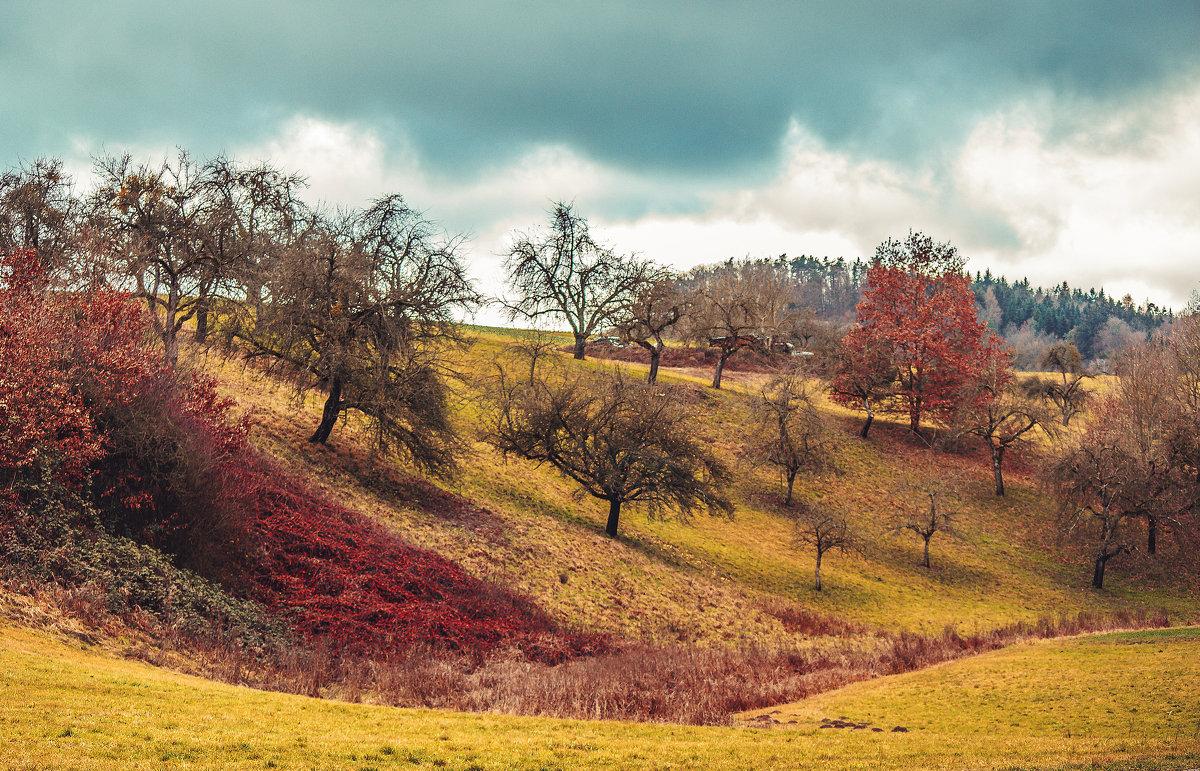 Осень - Надежда