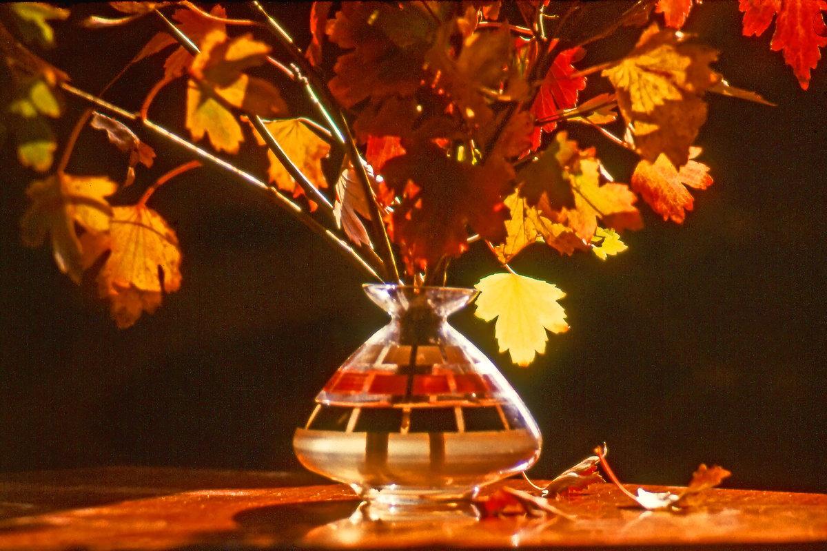 Осенний букет - Валерий Талашов