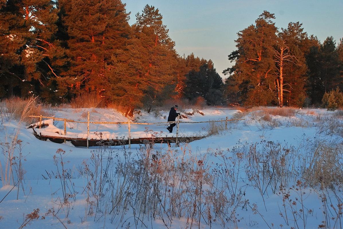 Зимнее утро - Валерий Толмачев