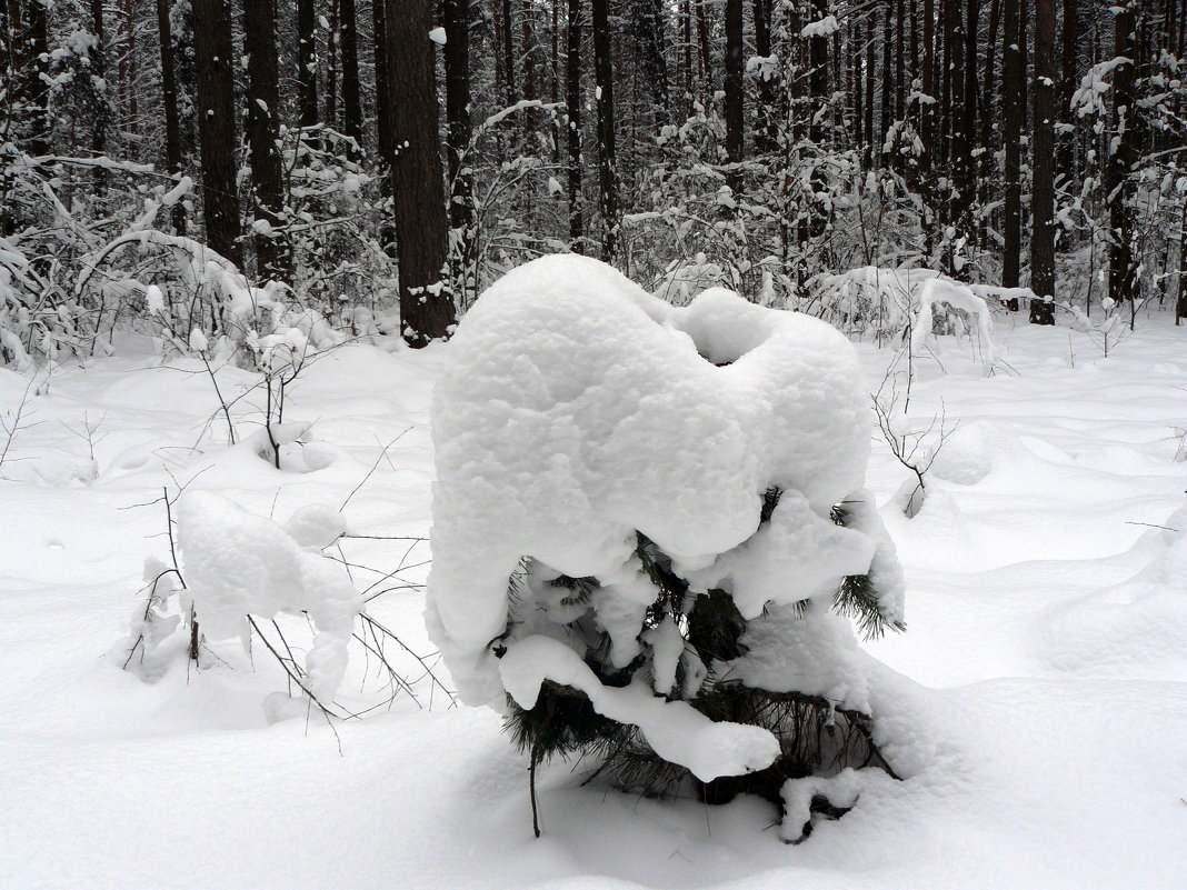 снежная тумба - Александр Прокудин