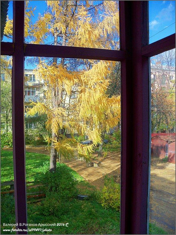 БАЛКОН - Валерий Викторович РОГАНОВ-АРЫССКИЙ