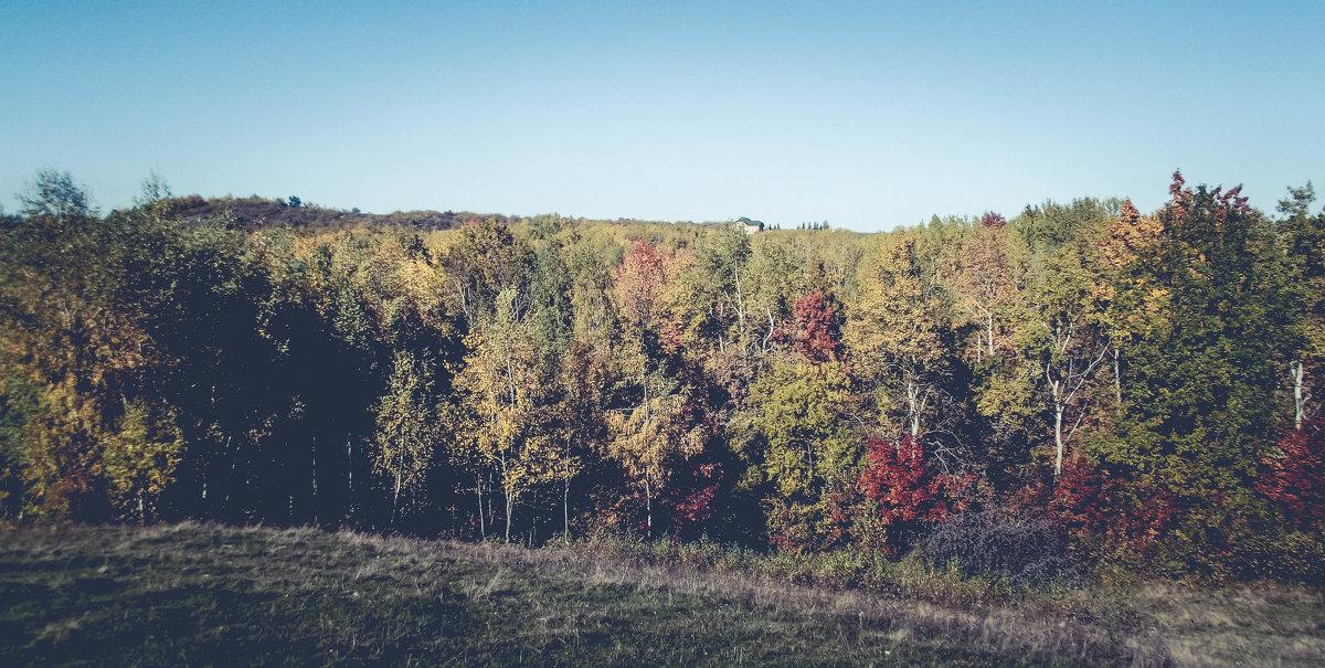 осень2015 - Володя Корнеюк