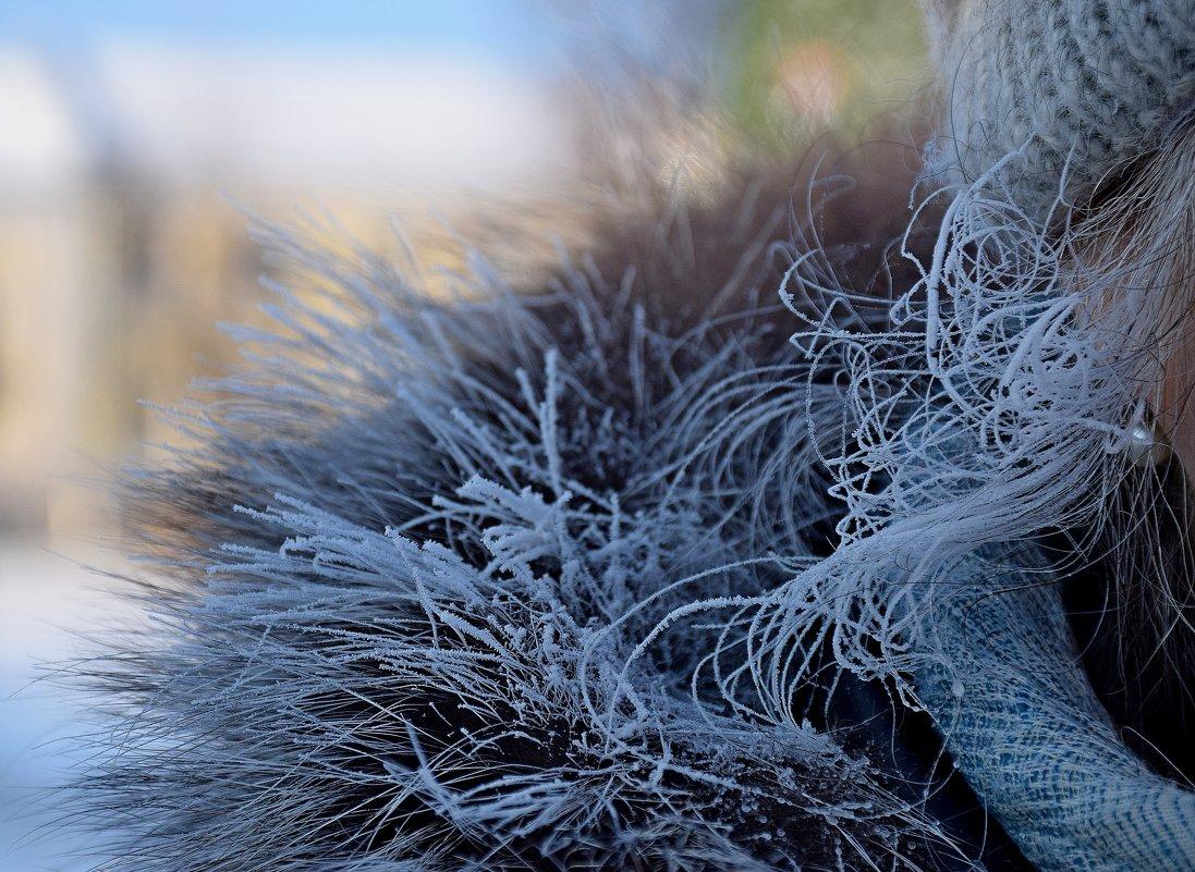 Ух! Мороз,мороз... - vkosin2012 Косинова Валентина