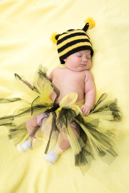 пчелка - наталья