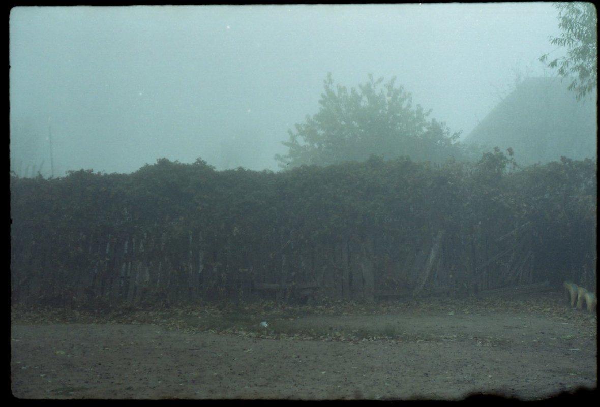 Туман - Сурикат Сусликов