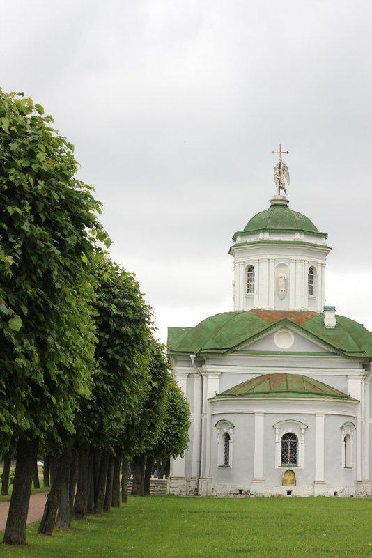 Храм Спаса Всемилостивого - kabanchik.nk