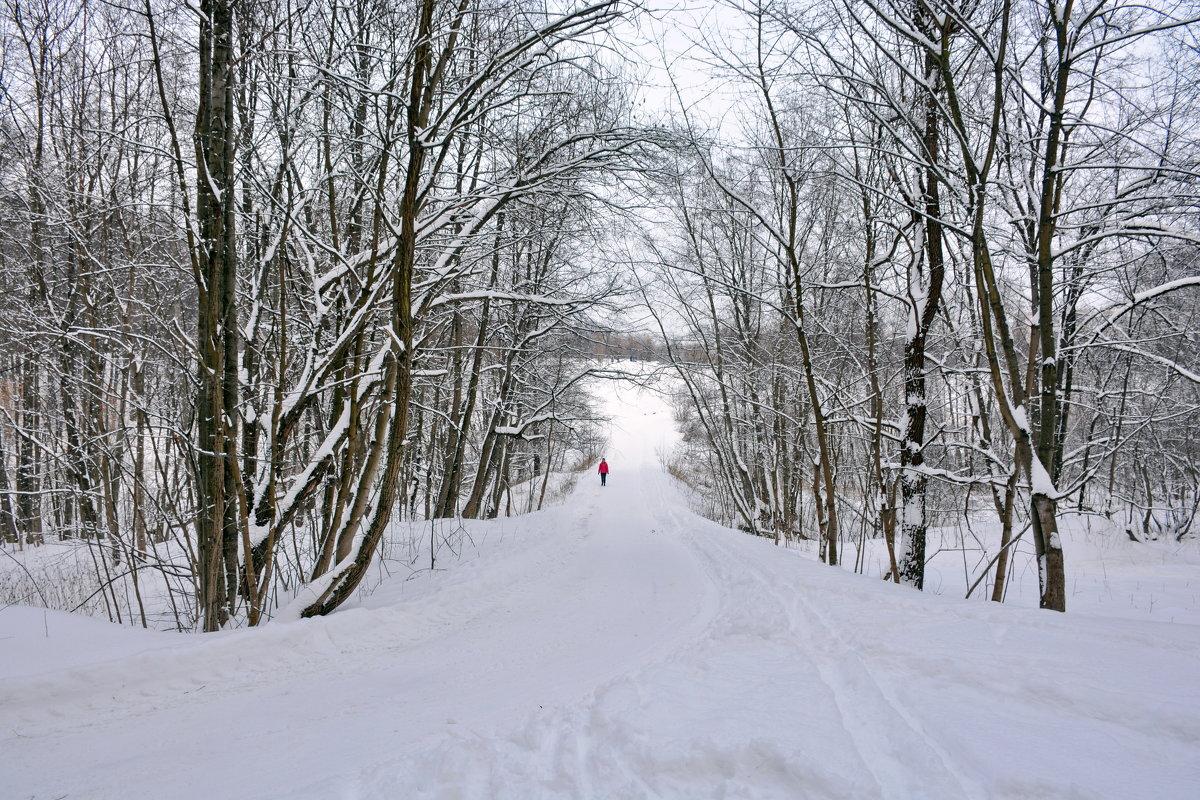 Московская зима - Леонид Иванчук