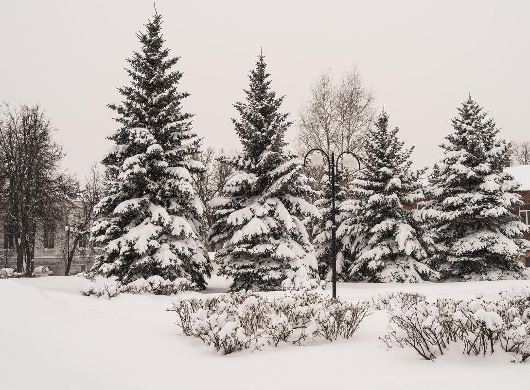 Цветное фото серых будней ... - Андрей Зайцев