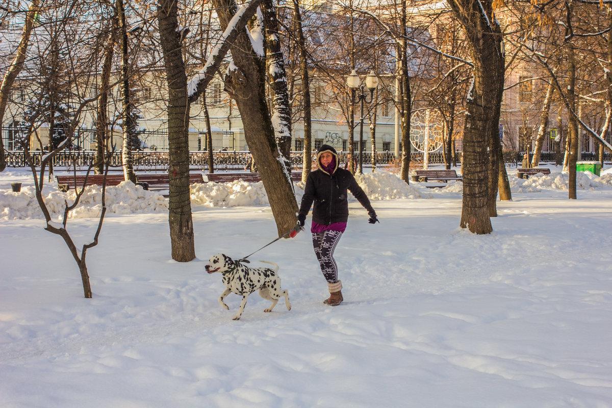прогулка на Чистопрудном - Дмитрий Сушкин