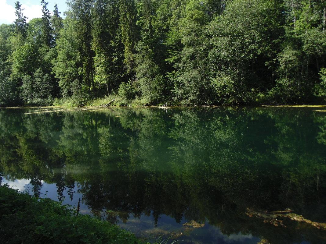 Родоновое озеро - Алина Шевелева