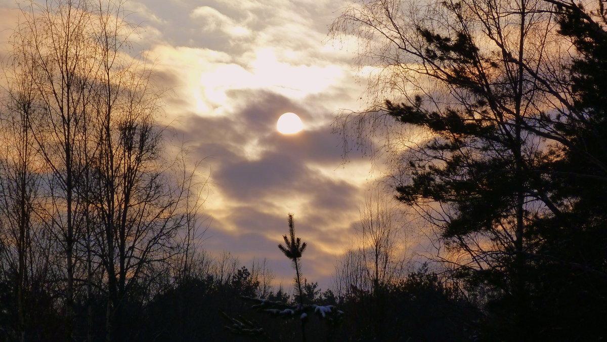 зимний вечер - Александр Прокудин