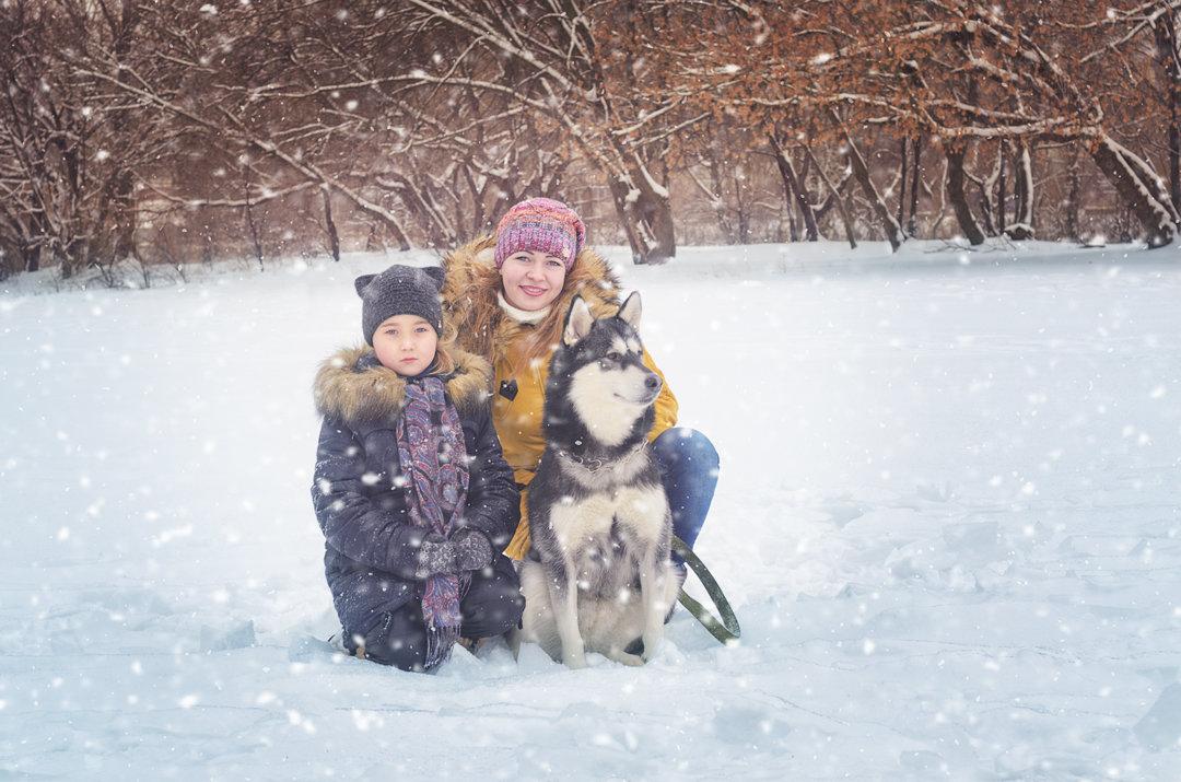 Семейная прогулка - Ксения Довгопол