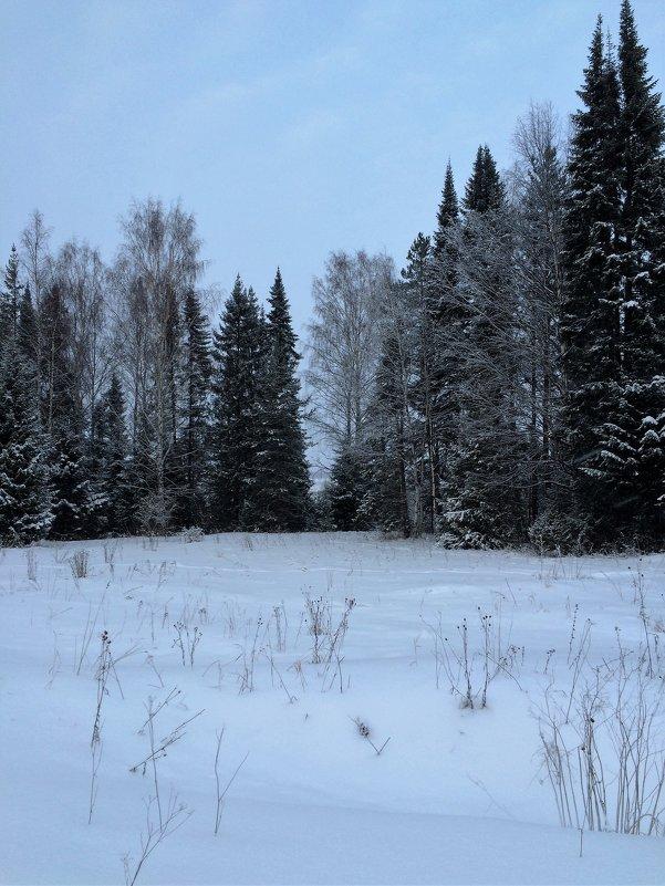в снежной тишине... - helga 2015