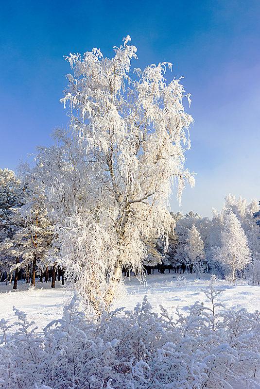Невеста в белом наряде - Анатолий Иргл