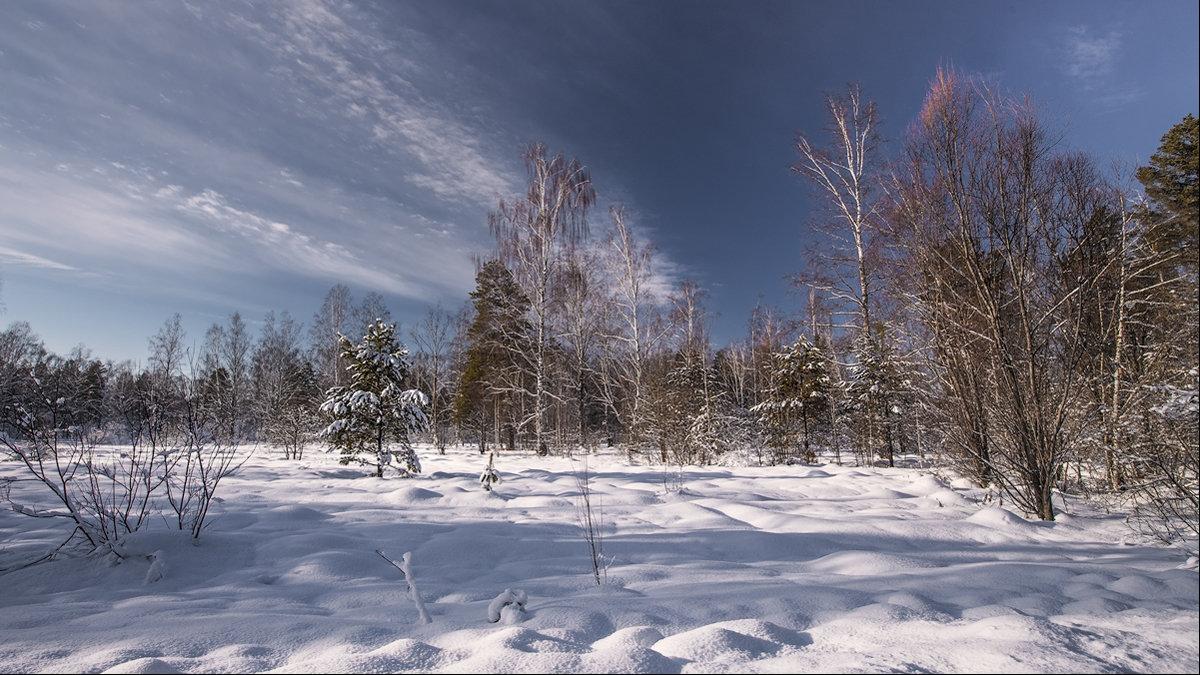 просто зима... - Наталья Маркова