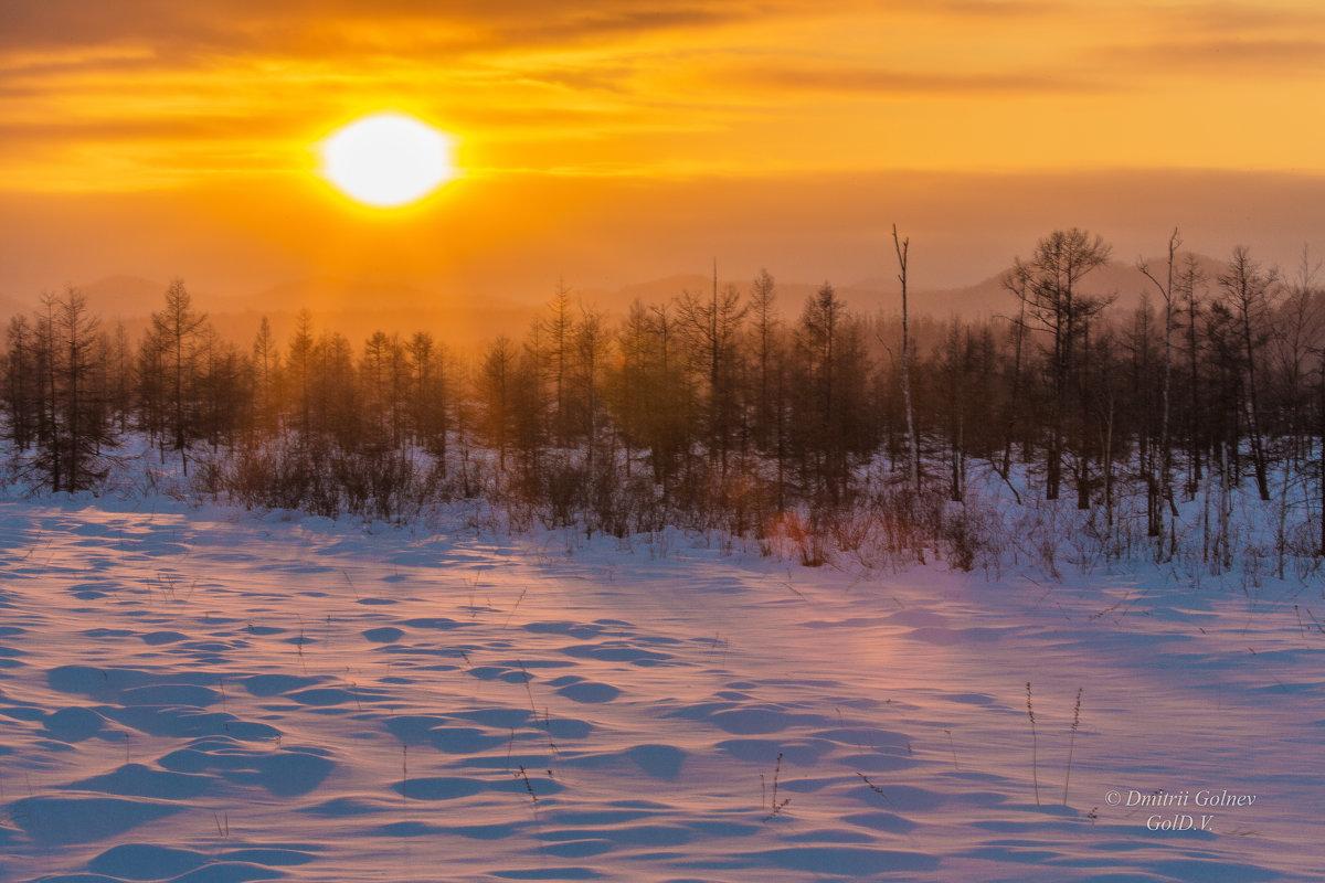 Таежный закат - Дмитрий Гольнев