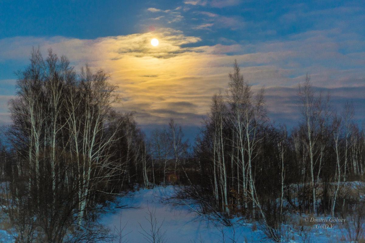 Луна - Дмитрий Гольнев