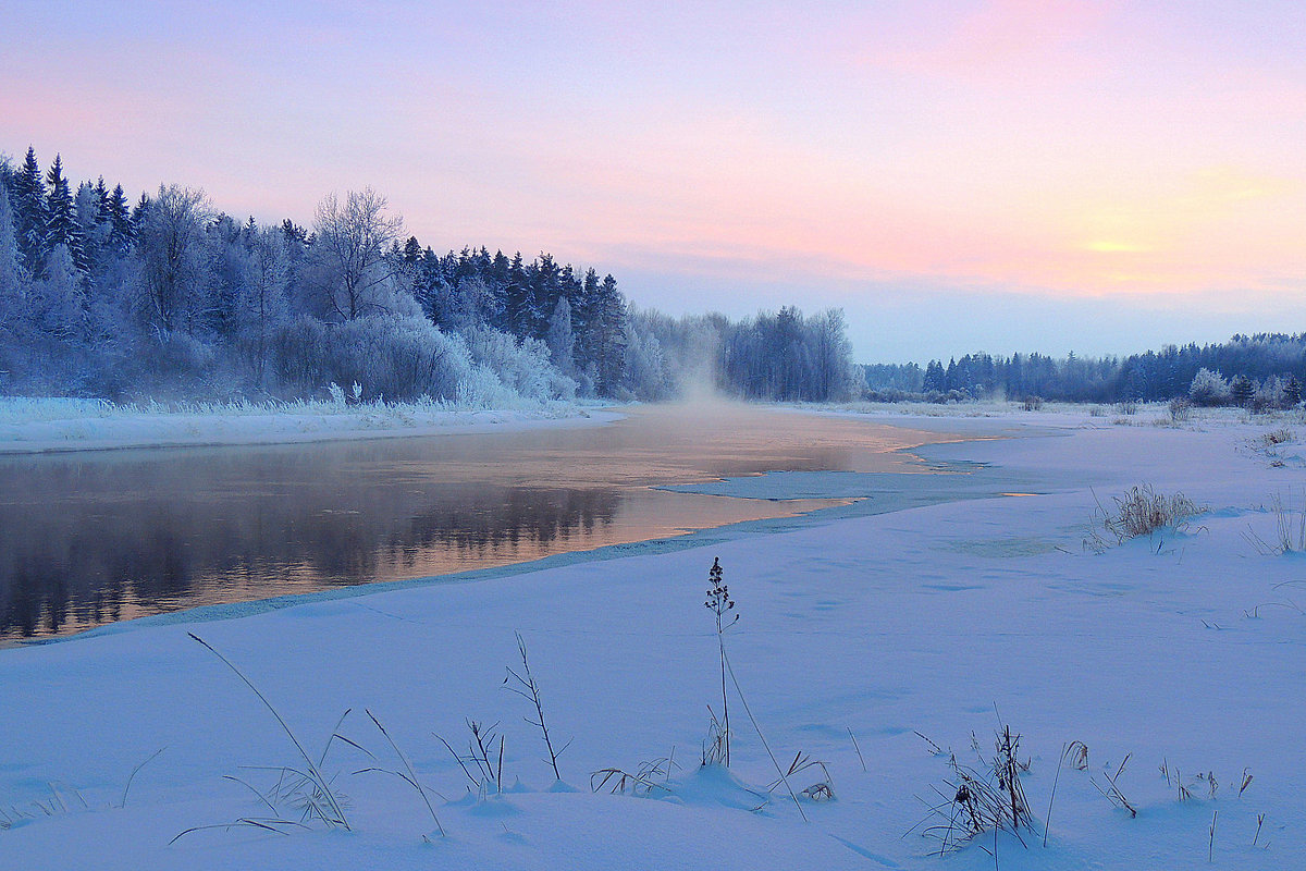 Синий туман - Павлова Татьяна Павлова
