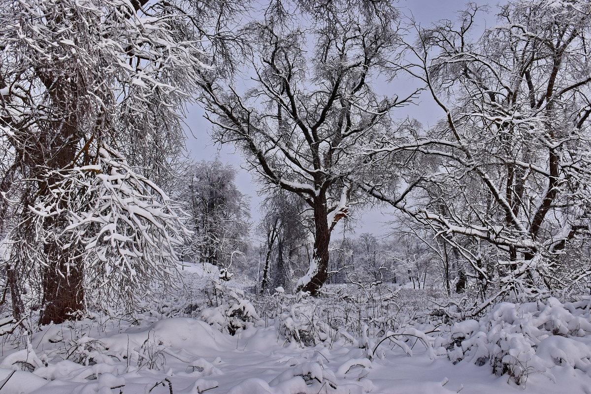 Природа. - Валера39 Василевский.