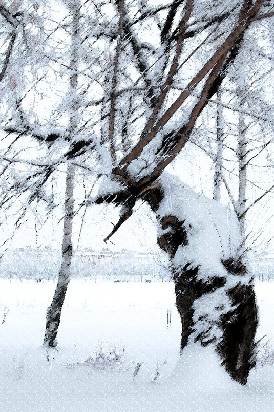 Зима - Виктор Калабухов