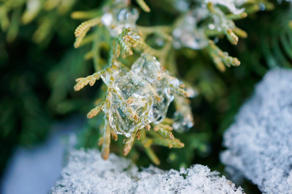 Ледяные украшения - Андрей Майоров