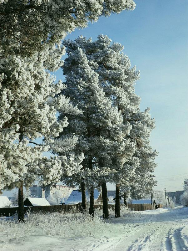 Зима. - Александр