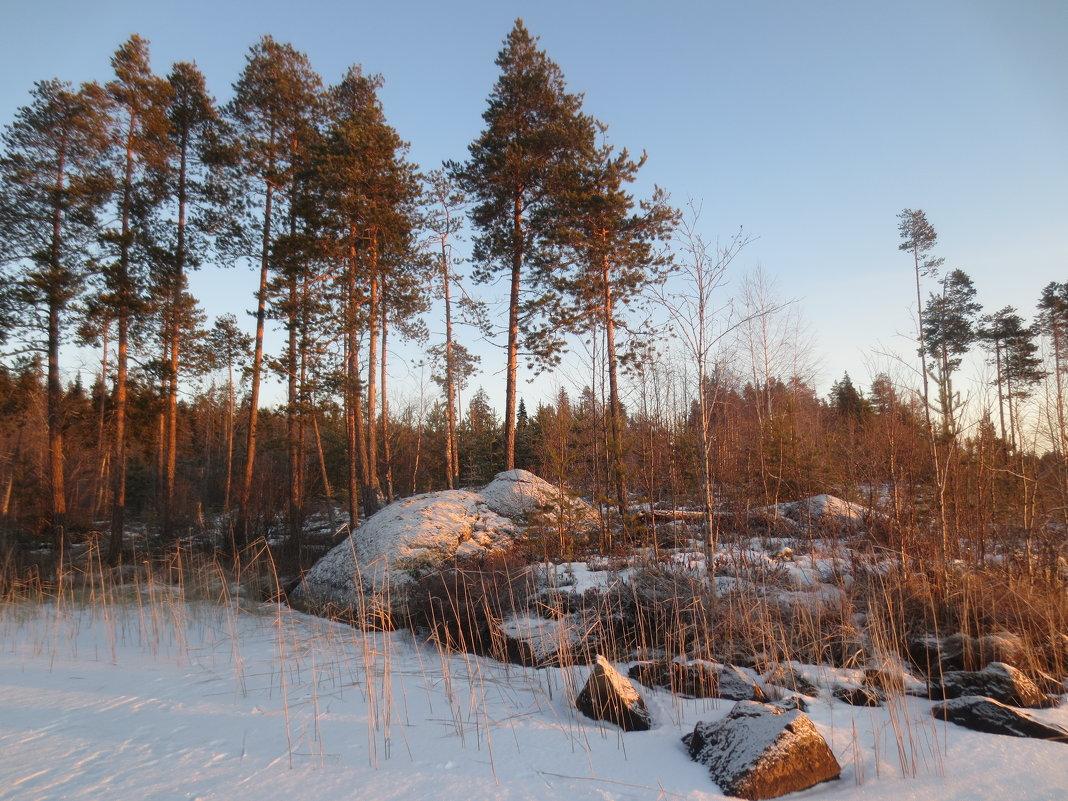 морозный день - Елена