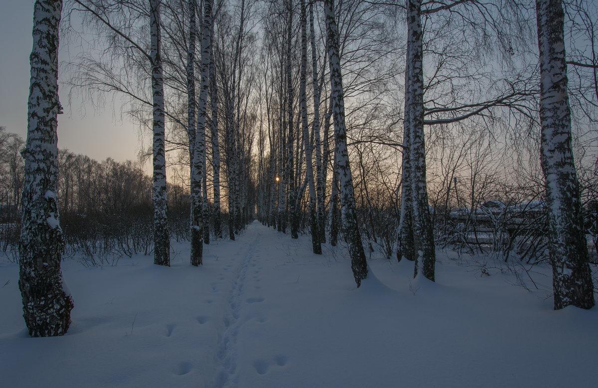 по следам зимы - Алексей -