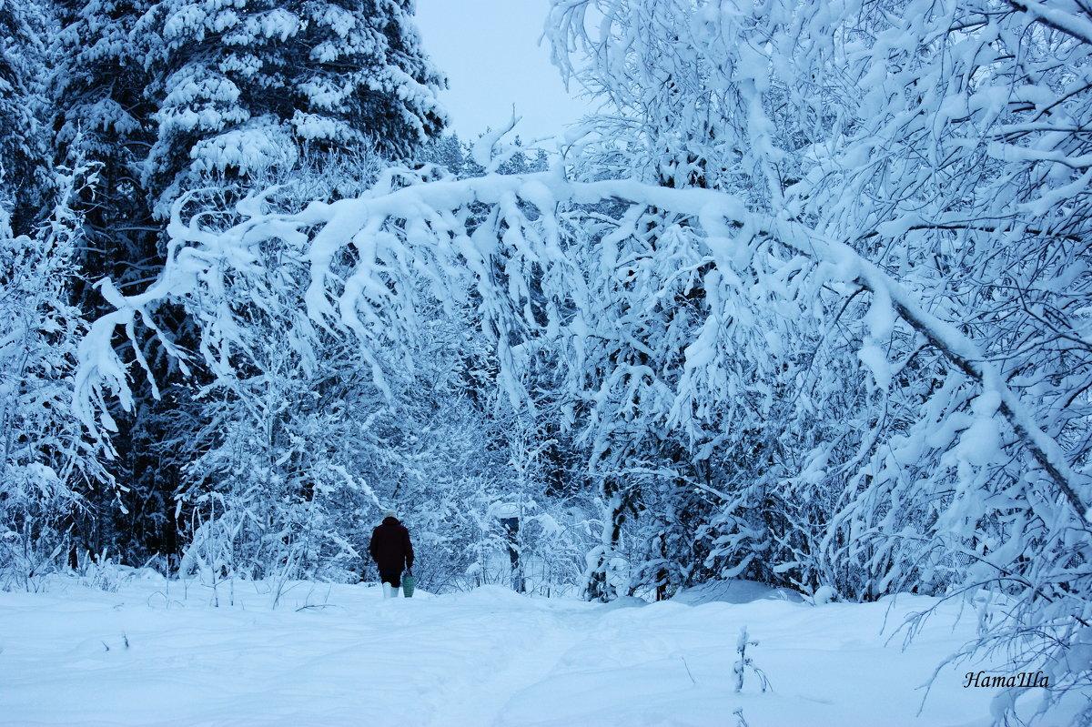 Снег - Наталья