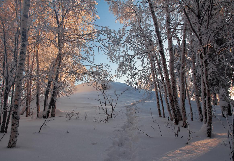 Путь к вершине - vladimir Bormotov