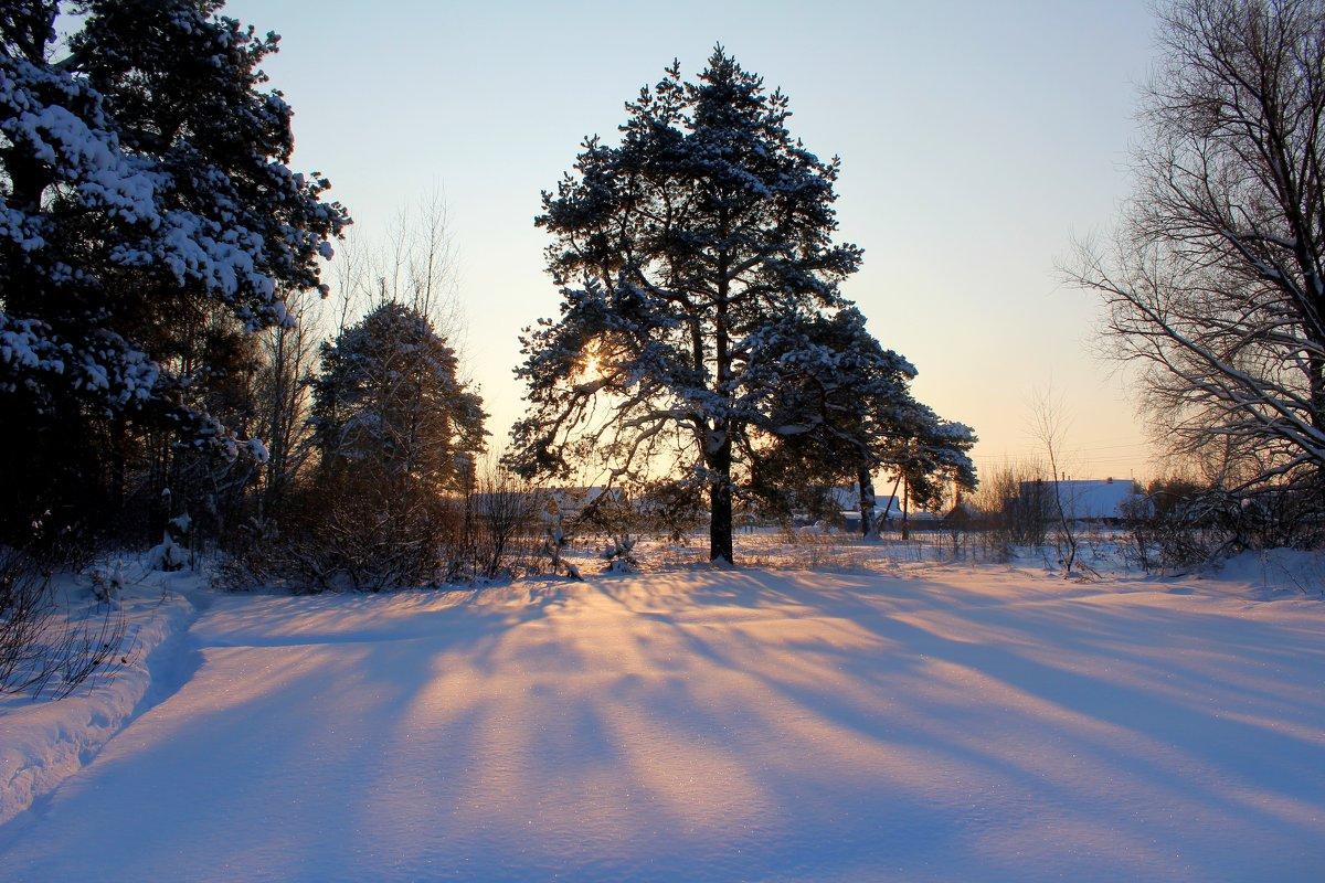 Морозное зимнее утро - Катя Бокова