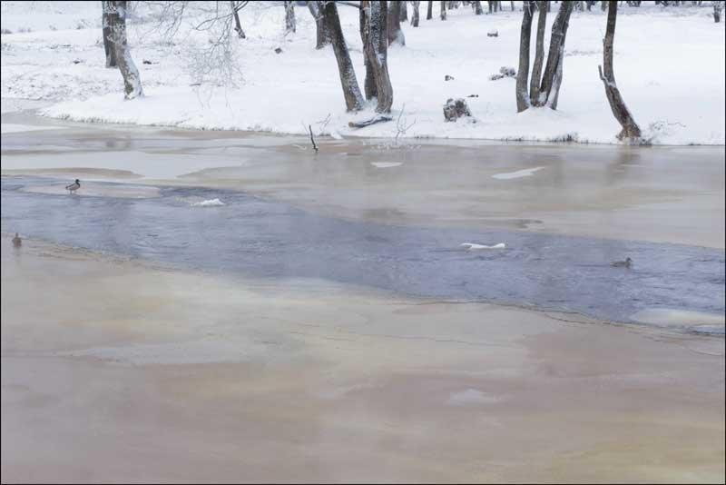 Живая вода - galina bronnikova