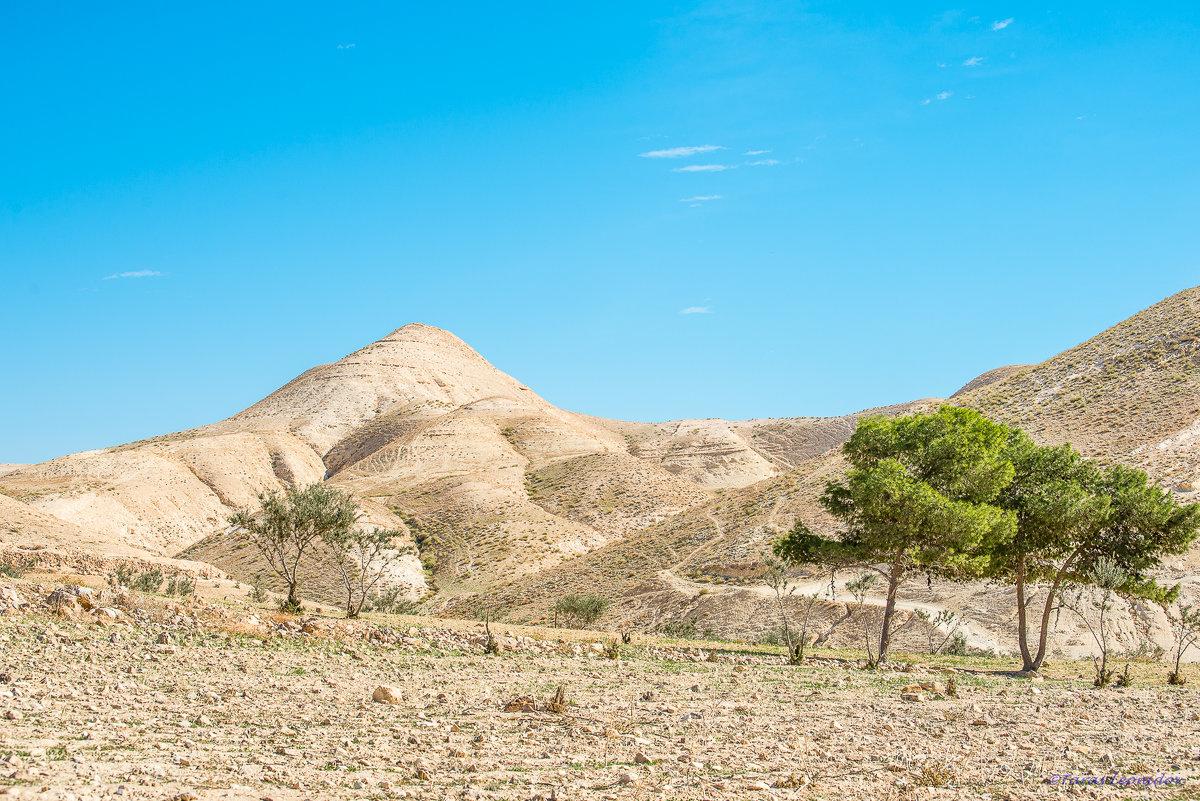 Пейзаж пустыни зимой - Тарас Леонидов
