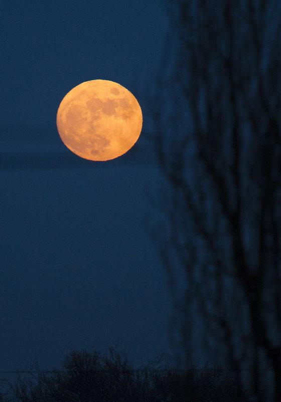 Вчера была красная луна 23.01.2016 - Виталий Латышонок