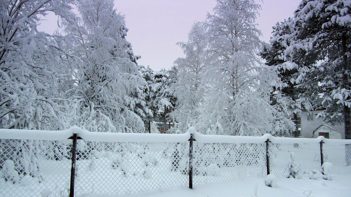 Снег..снег... - Галина Полина