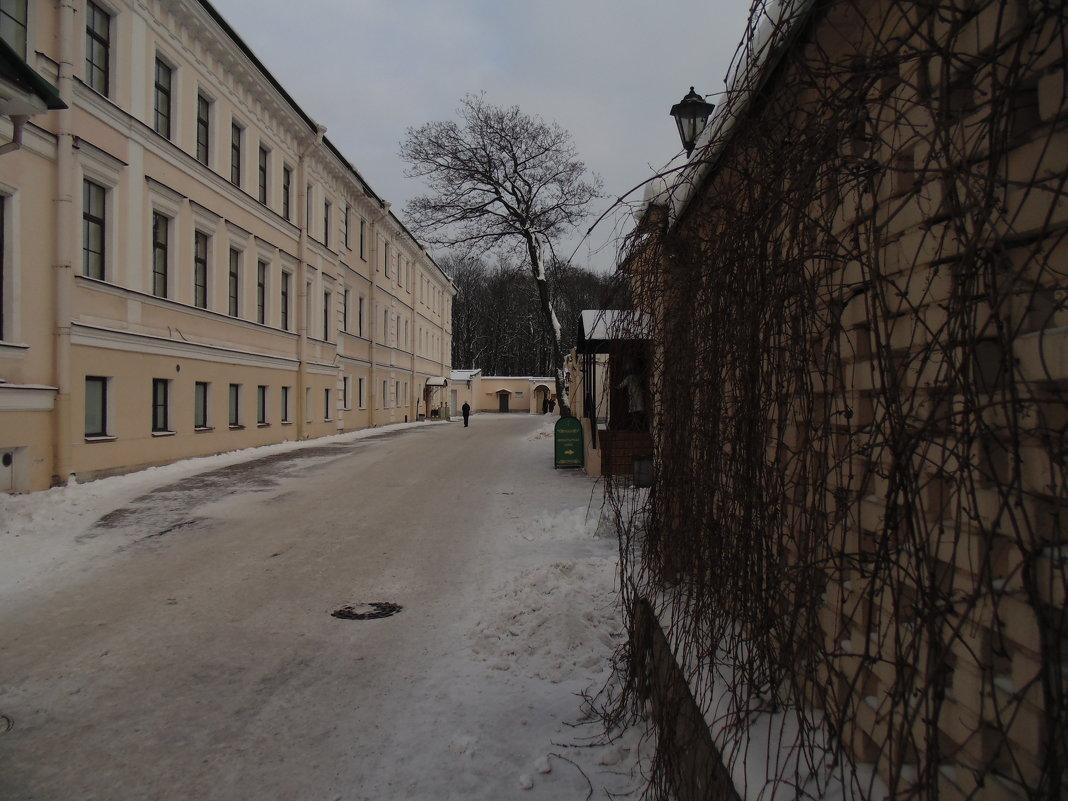 Подворье новодевичьего монастыря. СПб - ii_ik Иванов