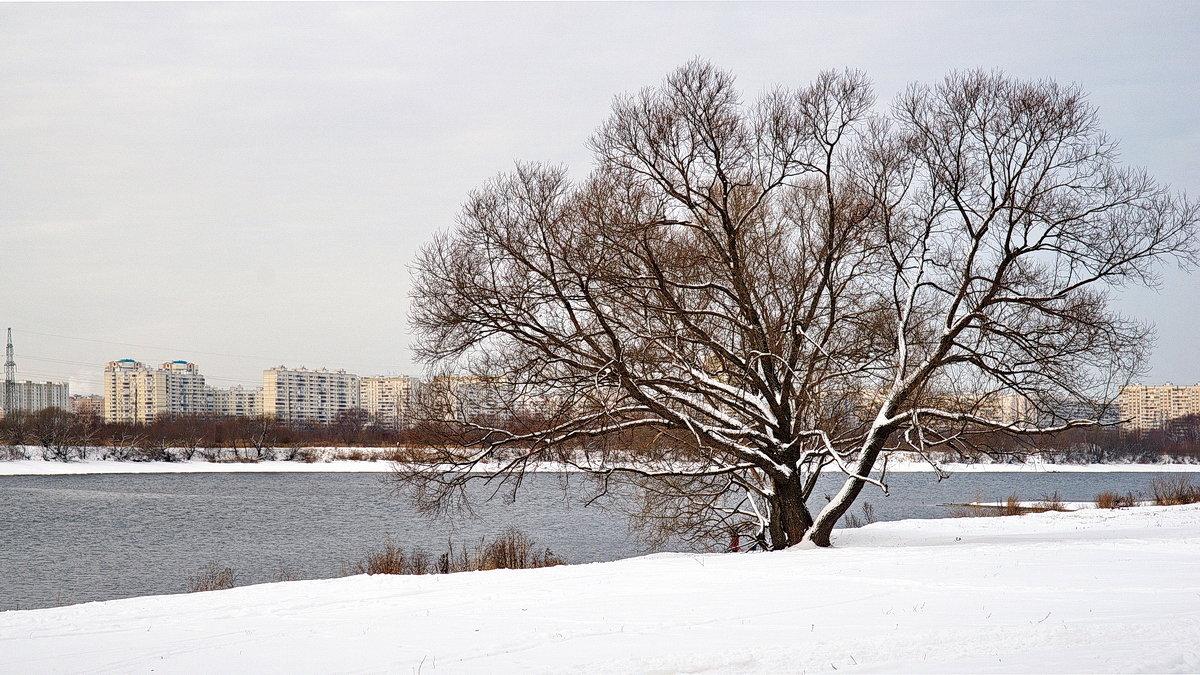 Зимняя зарисовка. - Юрий Шувалов