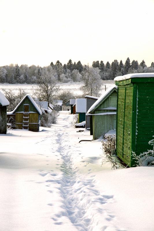 Зима - Ольга Осовская