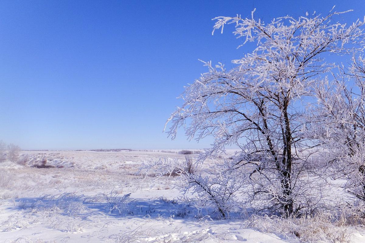 зимний день - татьяна
