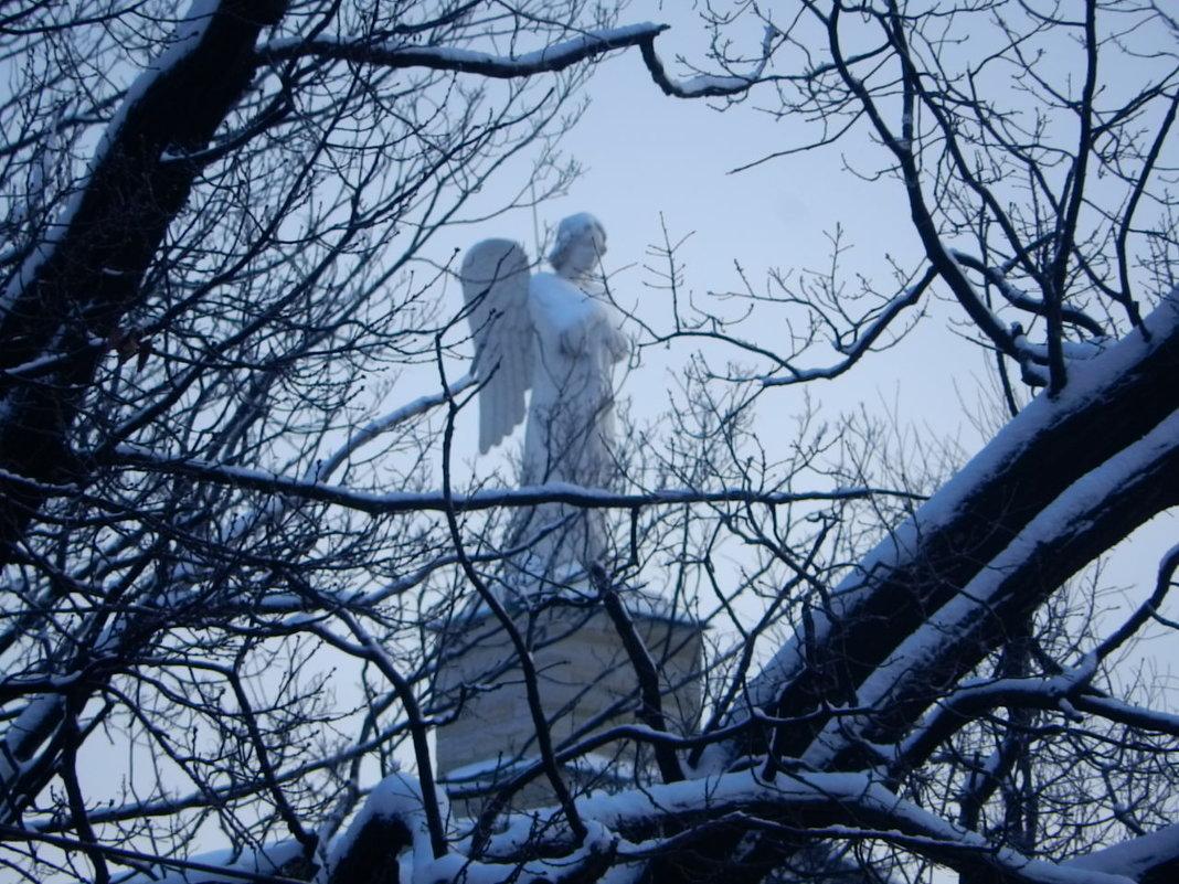 Еще один ангел над Питером - larisa Киселёва
