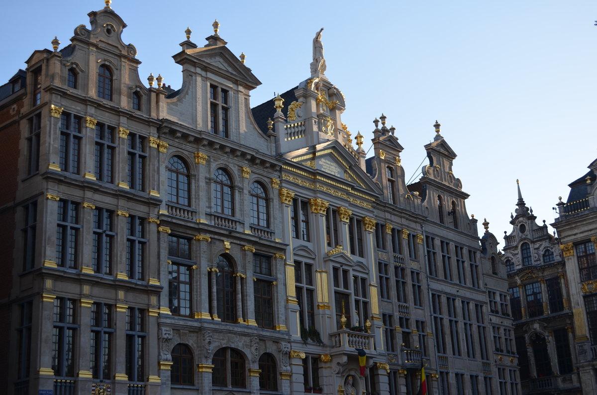 Бельгия - Елена