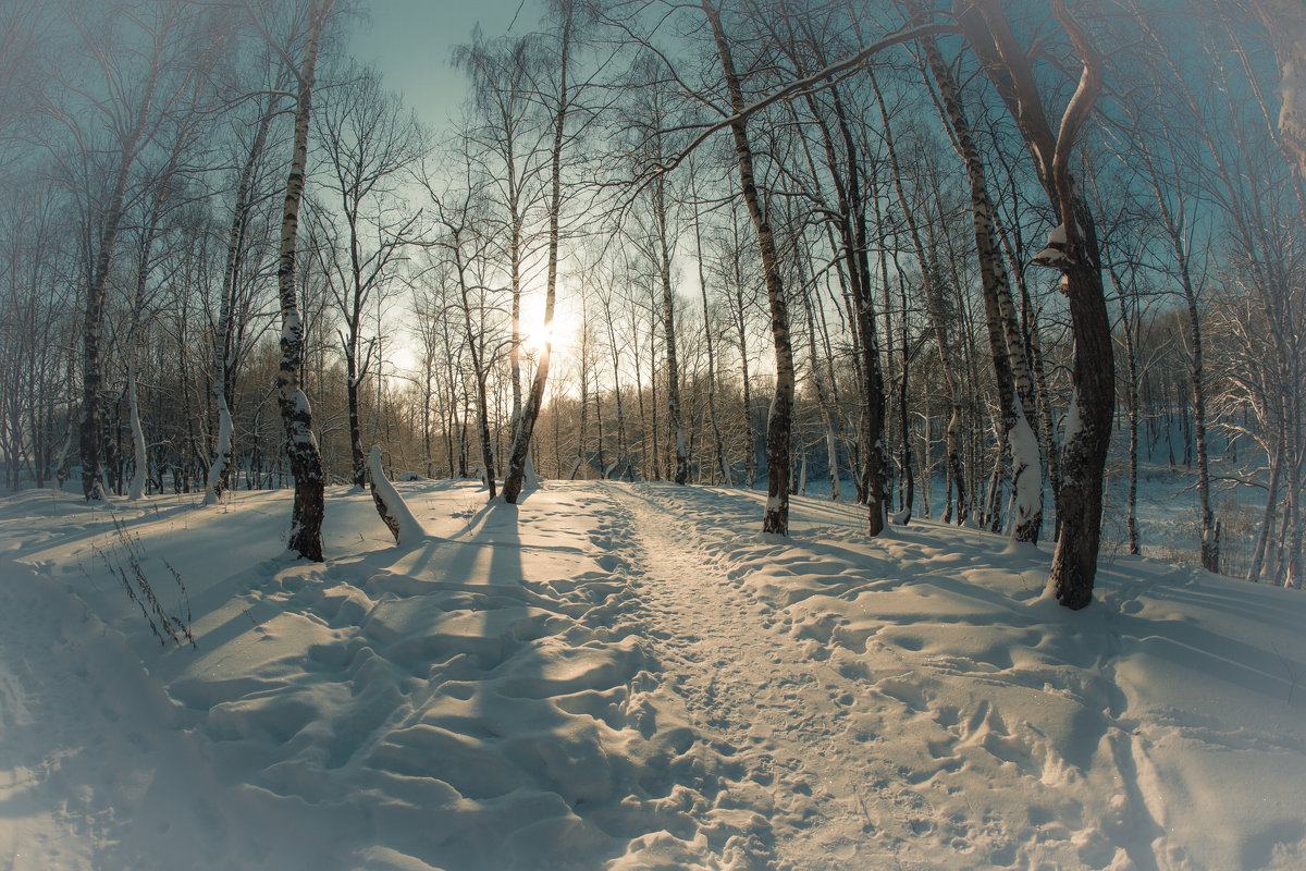 Зима.... - Николай Шейкин