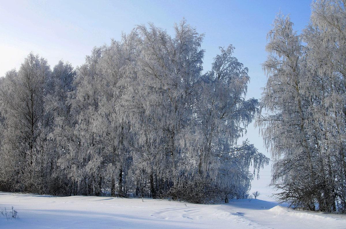 Зимнии пейзаж - Вячеслав