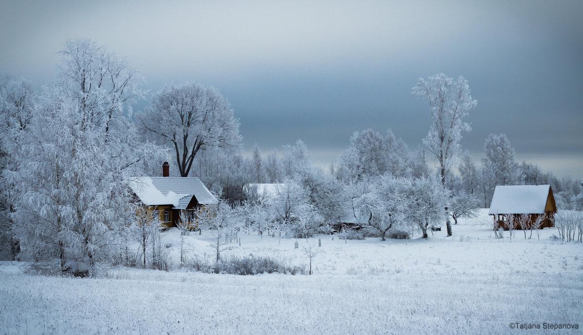 Зимняя сказка - Tatjana Stepanova