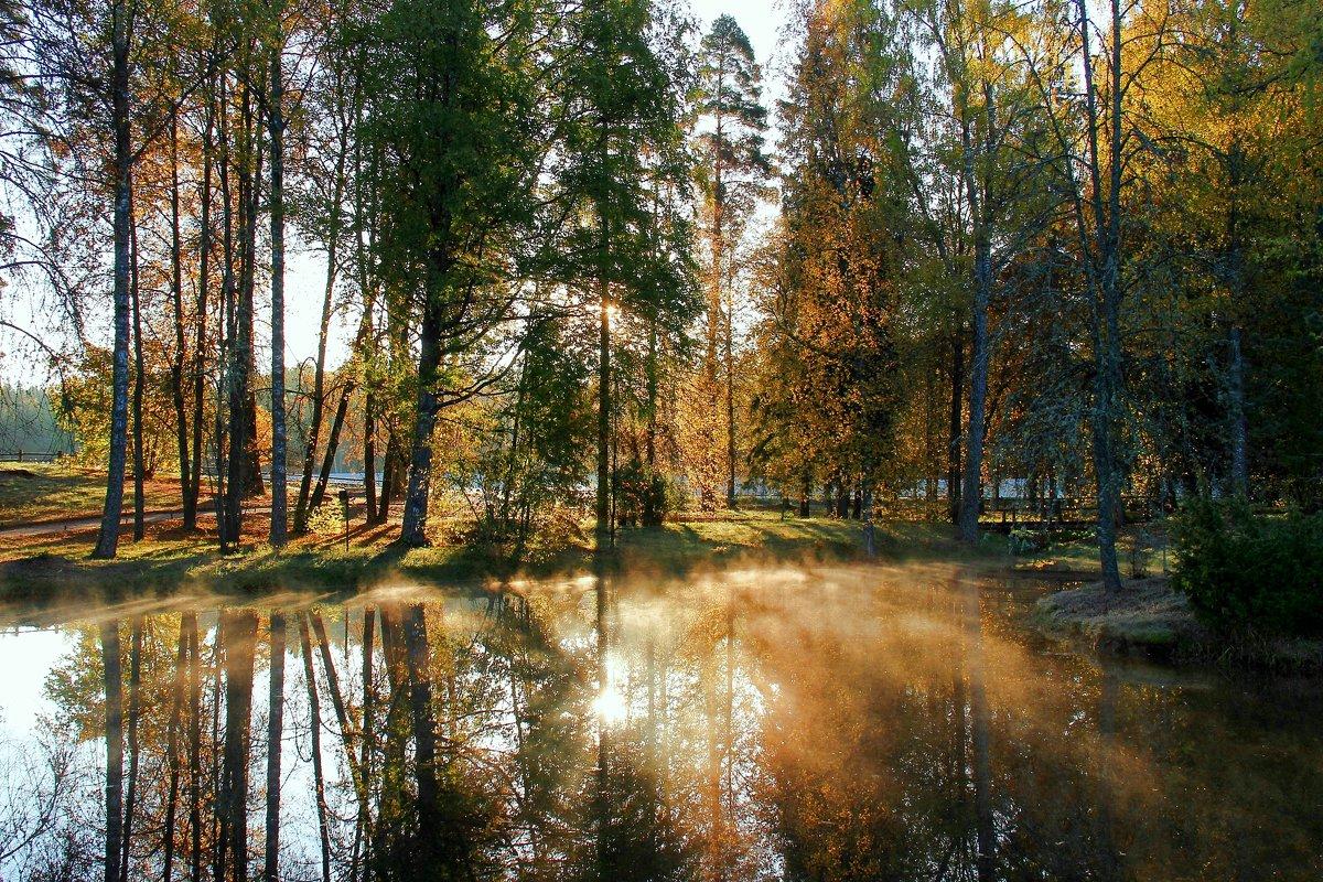 осень золотая - Нина